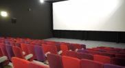 Cinéma Le Maingué (46)